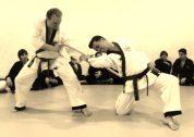 Maestros & Escuelas de Hapkido